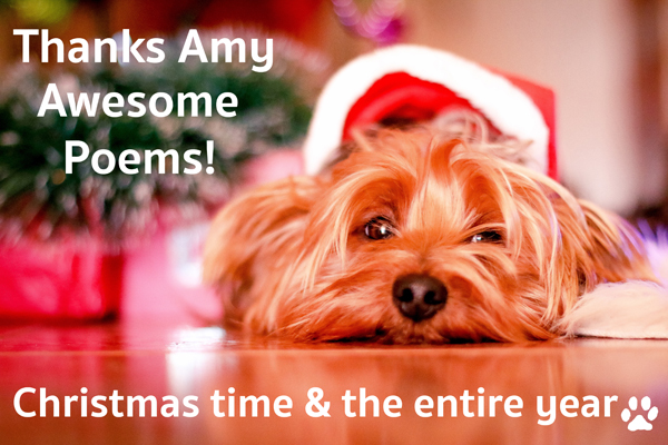 Christmas Dog Thanking Amy for Holiday Pet Poems